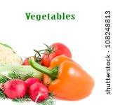 garden radish  tomato  pepper...   Shutterstock . vector #108248813