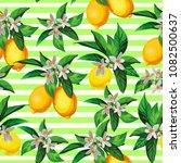 seamless citrus vector... | Shutterstock .eps vector #1082500637