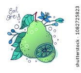 bergamot vector drawing.... | Shutterstock .eps vector #1082725823