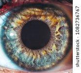 macro eyes color blue yellow... | Shutterstock . vector #1082736767