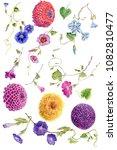 watercolor set flowers... | Shutterstock . vector #1082810477