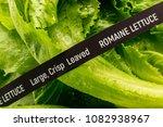 fresh vegetables. romaine... | Shutterstock . vector #1082938967