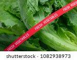 fresh vegetables. romaine... | Shutterstock . vector #1082938973
