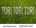 Small photo of Goal! Goal! Goal! (in german) written on soccer meadow