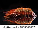 lobster dish in restaurant | Shutterstock . vector #1083541037