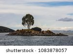 small island mid of titcaca... | Shutterstock . vector #1083878057