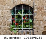 window in the old wall of the... | Shutterstock . vector #1083898253