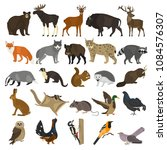 forest animals color flat icons ... | Shutterstock .eps vector #1084576307