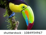 one very interesting details in ... | Shutterstock . vector #1084954967