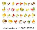 durian and mangosteen summer... | Shutterstock .eps vector #1085127053