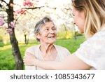 elderly grandmother and...   Shutterstock . vector #1085343677