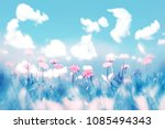 delicate pink flowers on blue... | Shutterstock . vector #1085494343