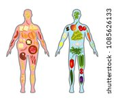 fresh vegetables and fruit in... | Shutterstock .eps vector #1085626133
