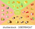 exotic fruits collection color... | Shutterstock .eps vector #1085984267
