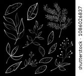 collection of foliage and... | Shutterstock .eps vector #1086026837