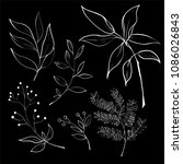 collection of foliage and... | Shutterstock .eps vector #1086026843