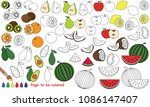 fruit slices set to be colored  ... | Shutterstock .eps vector #1086147407