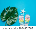 Small photo of colored flop flops sandals and palm leaf. Objects isolated on blue background