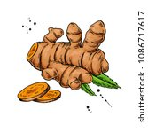 turmeric root vector hand drawn ... | Shutterstock .eps vector #1086717617