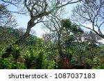 view of malang arjuno mountain | Shutterstock . vector #1087037183