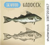 seafood sketch for signboard.... | Shutterstock .eps vector #1087201817