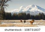 Horses Graze Near Base Of Thre...