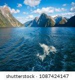 bottlenose dolphins swimming... | Shutterstock . vector #1087424147