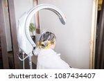 a woman wearing a perm | Shutterstock . vector #1087434407