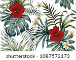 Stock vector tropical vintage hibiscus plumeria floral green leaves seamless pattern white background exotic 1087572173