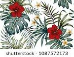 tropical vintage hibiscus... | Shutterstock .eps vector #1087572173