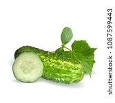 fresh  nutritious  tasty green... | Shutterstock .eps vector #1087599443