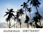 the beauty of nature during... | Shutterstock . vector #1087764347