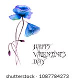 stylized flowers watercolor... | Shutterstock . vector #1087784273