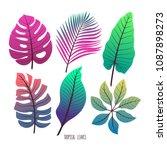 cute set of different green... | Shutterstock .eps vector #1087898273