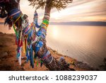 color shot of a shamanic tree... | Shutterstock . vector #1088239037