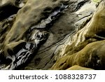 magnificent wilderness and... | Shutterstock . vector #1088328737
