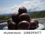passiflora edulis passion... | Shutterstock . vector #1088393477