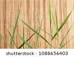 wooden tropic background  | Shutterstock . vector #1088656403