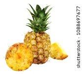 pineapple on white background.... | Shutterstock . vector #1088697677