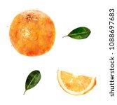 orange on white background.... | Shutterstock . vector #1088697683