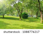 day time view of the city park. ... | Shutterstock . vector #1088776217