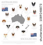 dogs by country of origin.... | Shutterstock .eps vector #1089248873
