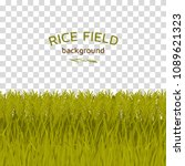 green rice field on checkered... | Shutterstock .eps vector #1089621323