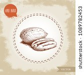 pecan nuts. hand drawn sketch... | Shutterstock .eps vector #1089782453