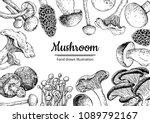 mushroom hand drawn vector... | Shutterstock .eps vector #1089792167