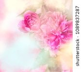 pink peony background  spring... | Shutterstock . vector #1089837287