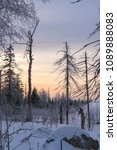winter mountain landscape. pine ... | Shutterstock . vector #1089888083