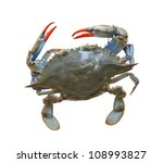 Blue Sea Crab Isolated On Whit...