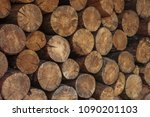 round pile of firewood | Shutterstock . vector #1090201103
