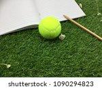 tennis ball is on green grass | Shutterstock . vector #1090294823